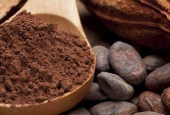 Какао — не только шоколад и вкусный напиток, но и прекрасное лекарство