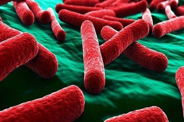 Симптомы и лечение кишечного гриппа у взрослых и детей