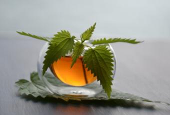 При какой температуре горячие напитки вызывают рак?