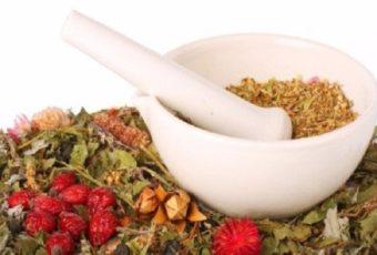 Мочегонные сборы трав (рецепты)