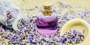 7 натуральных средств для снятия зуда от укусов насекомых