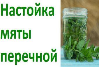 Настойка мяты перечной, рецепты, применение