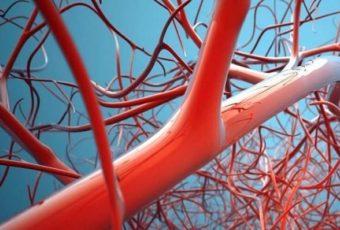 Плохое кровообращение: Тревожные симптомы болезни