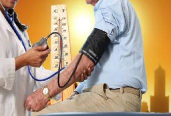 Полезная информация Влияние жары на сердечно-сосудистую систему